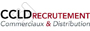 Offres d'emploi marketing commercial CCLD RECRUTEMENT